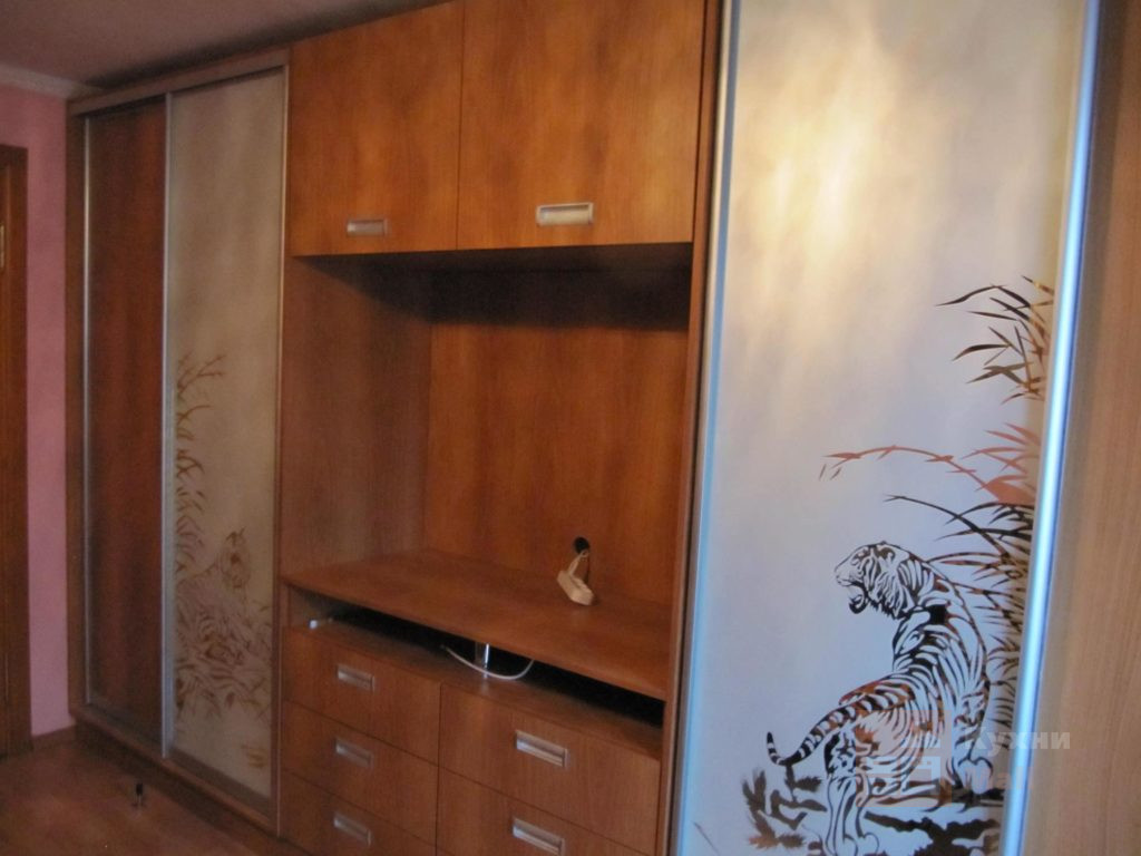 Шкаф-купе Тигры